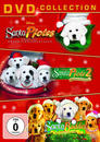 Buddies Weihnachts-Box DVD-Box (DVD) für 12,99 Euro