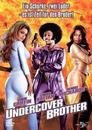 Undercover Brother (DVD) für 7,99 Euro