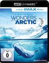 Wunder der Arktis (4K Ultra HD BLU-RAY) für 13,99 Euro