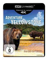 Adventure Yellowstone - Der Ruf der Wildnis (4K Ultra HD BLU-RAY) für 13,99 Euro