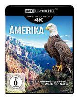 Amerika (4K Ultra HD BLU-RAY) für 13,99 Euro