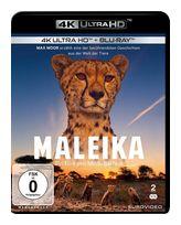 Maleika (4K Ultra HD BLU-RAY + BLU-RAY) für 29,99 Euro