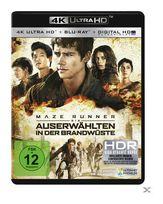 Maze Runner 2 - Die Auserwählten in der Brandwüste Special 2-Disc Edition (4K Ultra HD BLU-RAY + BLU-RAY) für 24,99 Euro