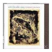 Understated (Edwyn Collins) für 14,99 Euro