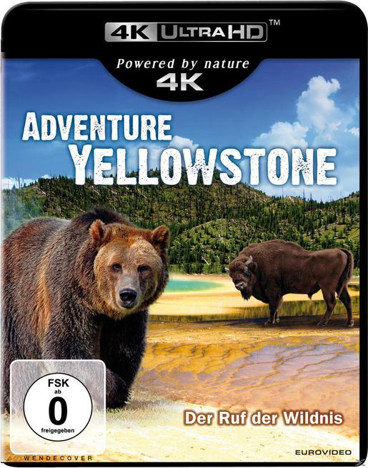 Adventure Yellowstone - Der Ruf der Wildnis (4K Ultra HD BLU-RAY)