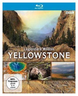 Yellowstone - Legendäre Wildnis (BLU-RAY)