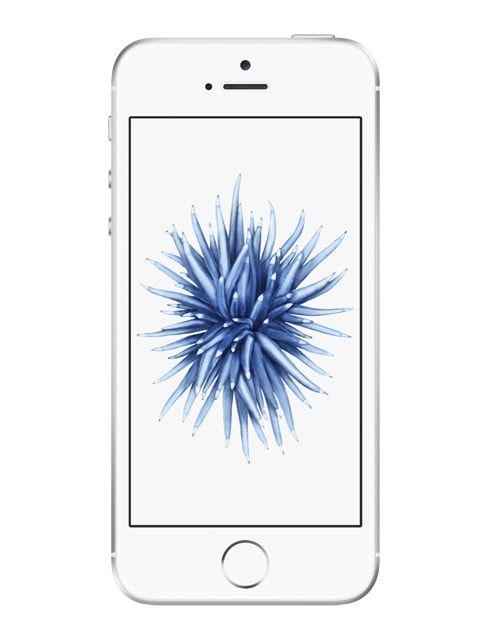Apple iPhone SE 32GB Smartphone 10,16cm/4'' iOS10 12MP für 349,00 Euro