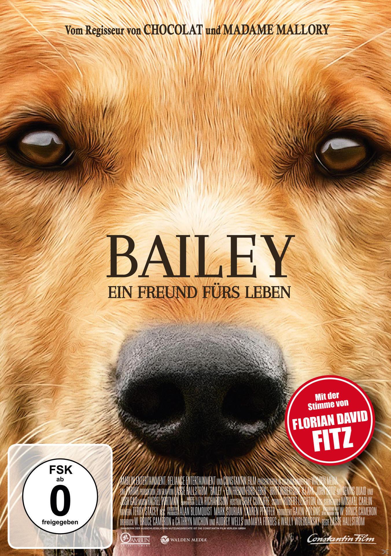 Bailey - Ein Freund fürs Leben (DVD) für 8,99 Euro