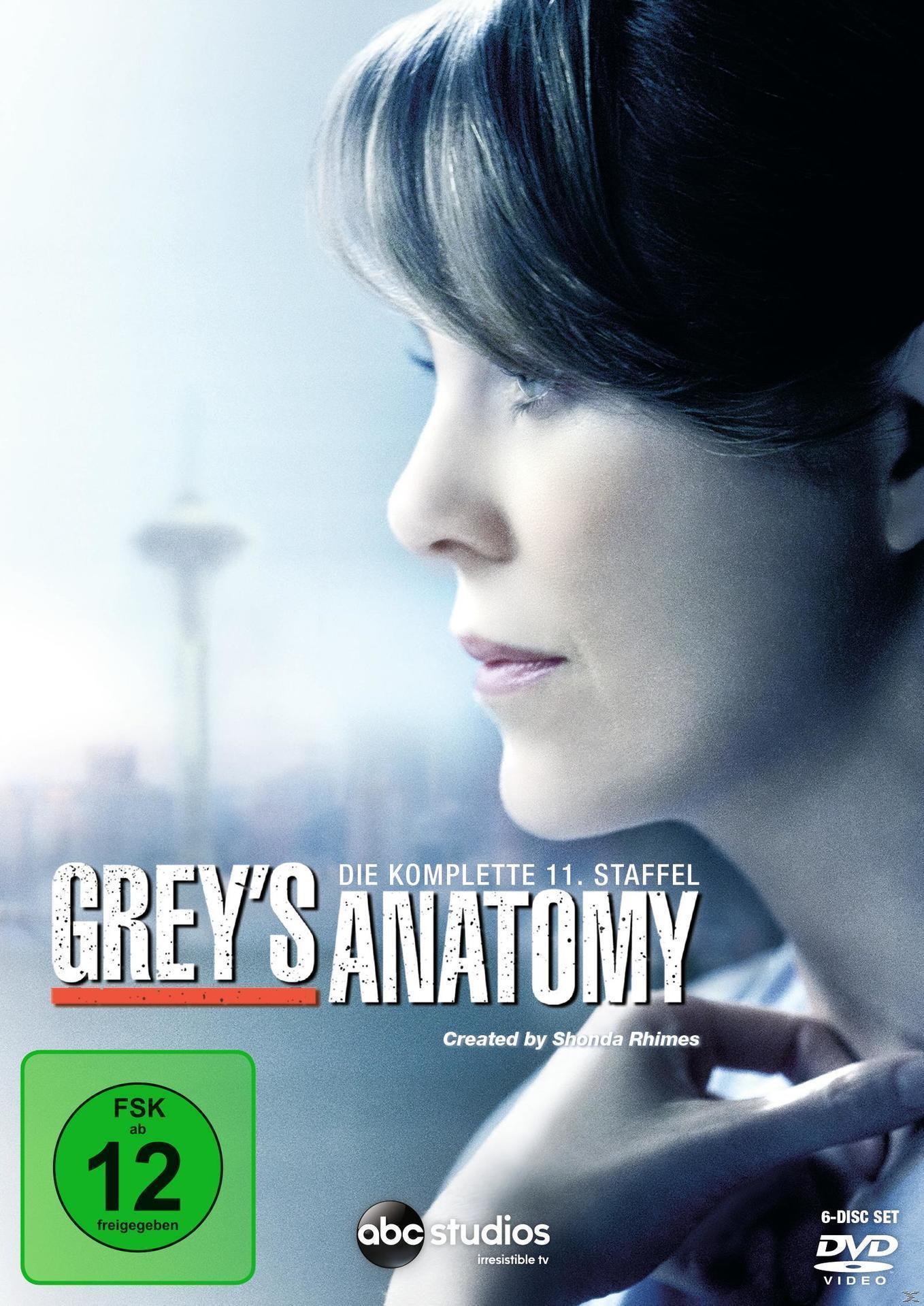 Grey's Anatomy - 11. Staffel DVD-Box (DVD) für 13,99 Euro