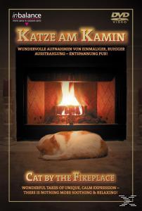 Katze am Kamin (DVD) für 5,99 Euro
