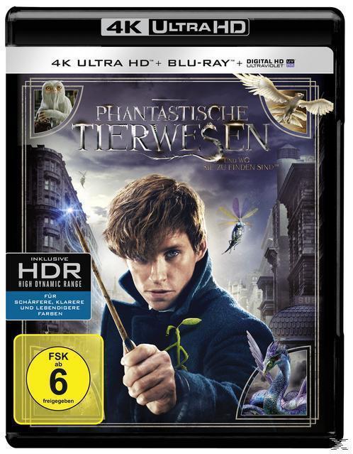 Phantastische Tierwesen und wo sie zu finden sind - 2 Disc Bluray (4K Ultra HD BLU-RAY) für 25,99 Euro