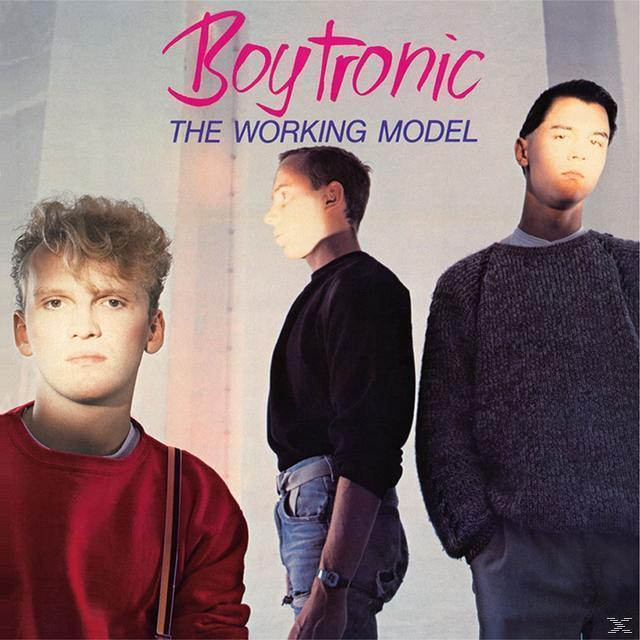 The Working Model (Deluxe Edition) (Boytronic) für 15,99 Euro