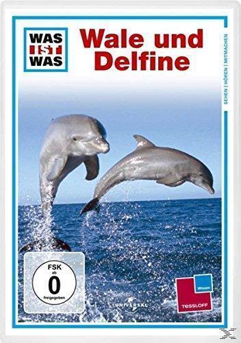 Was ist was - Wale und Delfine (DVD) für 7,99 Euro