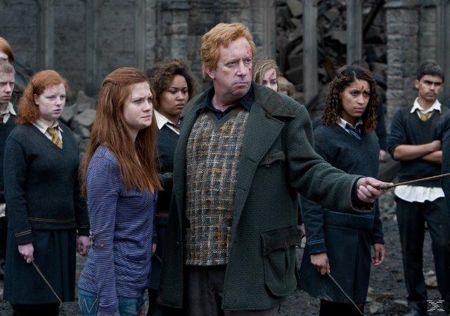 Warner Home Video Harry Potter Und Die Von Expert Technomarkt